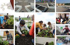 Le jardin qui guérit pour les enfants réfugiés