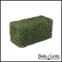 """24""""L x 12""""W Outdoor Artificial Boxwood Hedge $215.85...i need this! lol, no green thumb here!"""