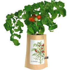Potting Shed Creations - Mini Tomato Tall Garden-in-a-bag