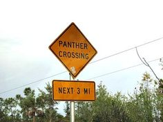 One of the many panther crossing signs near the Florida Panther National Wildlife Refuge