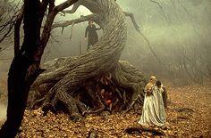 Sleepy Hollow ~ Tree of the Dead Film Tim Burton, Tim Burton Art, Sleepy Hollow Movie, Sleepy Hollow Tim Burton, Nightmare Before Christmas Tattoo, Johny Depp, Headless Horseman, Autumn Lights, Film Inspiration