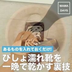 See interesting content from MAMADAYS - ママデイズ - directly on Timeline.