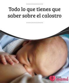 Todo lo que tienes que saber sobre el #calostro   El calostro es la #primera #leche #materna que el bebé recibe. El calostro no es igual que la leche materna que vendrá después. Descubre más en este artículo.