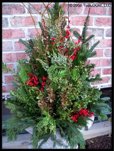 Google Image Result for http://tubloom.com/container_gardens/winter_designs_08a/winter_urn_design_001a.jpg