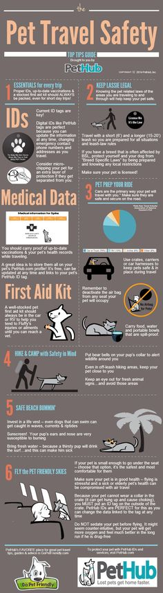 Pet Travel Safety Tips | PetHub  -- plus great advice from www.GoPetFriendly.com!: