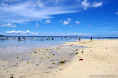 How about spending your summer vacation in Ishigaki (Okinawa)?