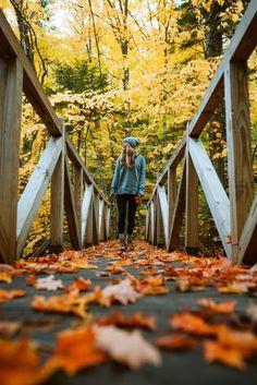 Autumn Photography, Creative Photography, Travel Photography, Photography Tips, Landscape Photography, Street Photography, Flower Photography, People Photography, Photography Business
