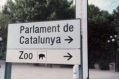 cartel zoo
