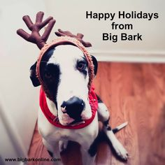 Happy Holidays! Big Bark Members get 4 seasonal goodie boxes your big dog will love. Join now at www.bigbarkonline.com.