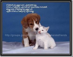 friendship quotes funny malayalam