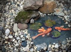 Painted Koi Pond ( acrylic on slate tile )Seal and place in a shallow pond. No Maintenance or Fatalities. Bad Link but good idea.