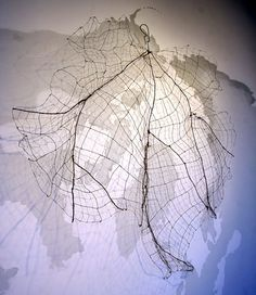"""Maureen Ciaccio  -  World Leaf: Arctic Circle - 2010 - various wires, paint on wall - 180"""" x 72"""" x 14"""" - """" My sculpture and installations draw comparisons between the organization we find in nature and that which we impose upon the world."""""""