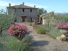 lavender and geranium