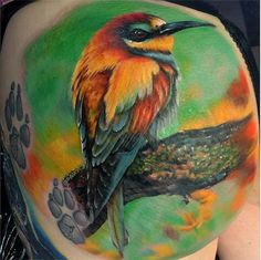 Max Pniewski is a pretty unconventional tattoo artist. Not only is he highly skilled in color photorealism, but he also works in a particular style he refers to Cool Tattoos, Bird Tattoos, Awesome Tattoos, 3 Tattoo, Inked Magazine, Photorealism, Animal Tattoos, Tattoo Artists, Watercolor Tattoo