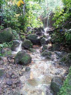 Sulfur Springs, SOUFRIERE, ST. LUCIA