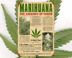¿Por qué es ilegal la marihuana? (Historia de la criminalización de una planta) http://pijamasurf.com/2011/03/%C2%BFpor-que-es-ilegal-la-marihuana-historia-de-la-criminalizacion-de-una-planta/