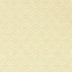 Sanderson Pinjara Trellis Woad Wallpaper DLMW216907