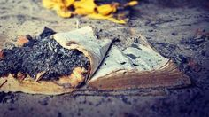 Bible found in Nigerian church burned by Muslims. Can you imagine the international outcry if this were the Koran?