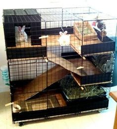 Resultado de imagem para diy indoor rabbit cages