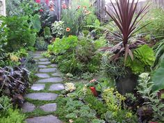 planting a stone path | Garden Decor, Interesting Design For Kid Backyard Landscape : Gorgeous ...