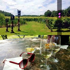 Adventure day.  A quick stop at a Quebec vineyard on way to Ottawa.