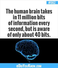 eDidYouKnow.com ►  The human brain takes in 11 million bits of information every second, but is aware of only about 40 bits.