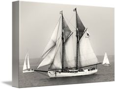 """Tall+Ships+Sailing""+by+Dapixara+Art,+Cape+Cod,+Wellfleet+-+United+States+//+Tall+Ships+Sailing.+(Black+Dog)++<a+href='http://www.dapixara.com/black_and_white_photography.html'+rel='nofollow'+target='blank'>Black+and+White+Photography</a>+//+Imagekind.com+--+Buy+stunning+fine+art+prints,+framed+prints+and+canvas+prints+directly+from+independent+working+artists+and+photographers."