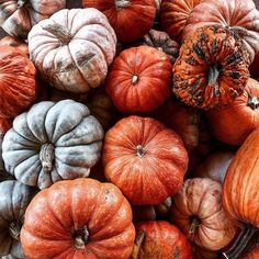 Insta: @yessica.sarahi #pumpkins #autumn #fall #october #instagram