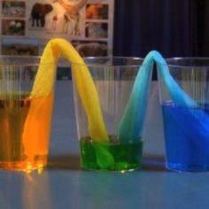 Expérience de mélange de couleurs. Eau et colorant alimentaire bleu et jaune, papier absorbant de qualité roulé.
