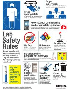 Educational infographic & data visualisation Infographic: Lab Safety Rules Infographic Description Lab Safety Riles - great for reminding students about Chemistry Classroom, Teaching Chemistry, Chemistry Labs, Classroom Rules, Classroom Ideas, Science Safety Posters, Science Lab Safety, Science Labs, Science Education