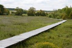 Wet meadows and source of the river Norges by TERRITOIRES Landscape Architects. - Bing images