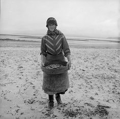 Mrs Lettice Rees harvesting cockles on Cefn Sidan beach, Wales