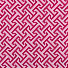 Rapsberry Geometric Canvas
