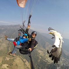 More from Talo's recent Parahawking flight. Gopro Photography, Artistic Photography, Powered Parachute, Flying Vehicles, Fun Outdoor Activities, Hang Gliding, Bungee Jumping, Paragliding, Weird Pictures