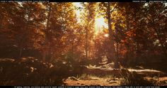 Forest Lighting study - polycount
