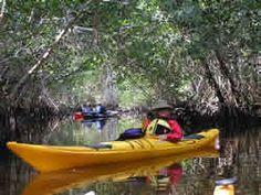 Adventure Kayaking @Indian River Lagoon FL  :)