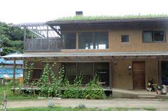 ■みどりのカーテンと草屋根