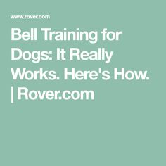 Bell Training for Dogs: It Really Works. Here's How. | Rover.com