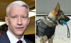 Anderson Cooper Donates Lifesaving Vests For All K9 Members Of A Virginia Police Department - BarkPost