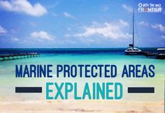 Marine Protected Areas Explained | blog.frontiergap | www.frontier.ac.uk | #marine #conservation #gapyear #blog #travelblog #science #ocean #management