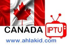 Here you'll find all new iptv canada files and also all mix bouquets on the fastest iptv free server. free for all package channels canada playlist. Canada, Office Water Cooler, Best French Press Coffee, Free Tv And Movies, Stages Of Love, Male To Female Transition, Human Poses Reference, Best Seo Services, Shopping