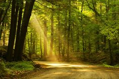 7 Stories to Inspire Getting Outdoors | Spirituality & Health Magazine| Page 1