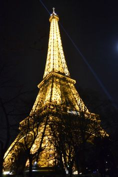 Tour Eiffel - Paris 2/01/15
