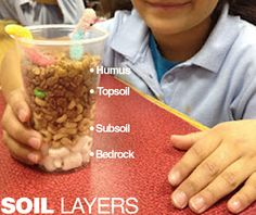 Layers of soill. Bedrock- mini marshmallows. Subsoil- cheerios (whole and crumbled) Topsoil- cocoa krispies mixed with mini m&m's for Humus. Topped with a gummy worm Kindergarten Science, Elementary Science, Science Classroom, Science Education, Teaching Science, Science Activities, Science Experiments, Science Ideas, Teaching Ideas