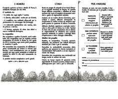 Progetto Cavin de Confin del GAST, Gruppo Acquisto Solidale Territorio (1a parte)