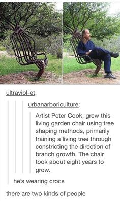Urbanarboricultum: Amst Peter Cook, grew this living garden chair using tree shaping methods. primarily training a living tree through constricting the direction of branch growth. The chair took about eight years to grow. he's wearing crocs He grew a tree