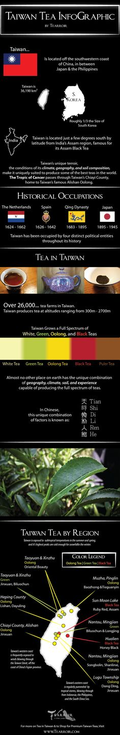 Tea Infographic: All the Tea in Taiwan