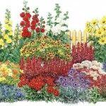 schema 1 cu flori iubitoare de soare