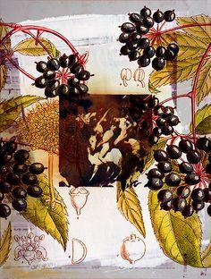 """""""FLORENCIO MAÍLLO. DEL JARDÍN DEL BOSCO"""". MNAD, C/ Montalbán 12, 28014, Madrid. Composición-08 Florencio Maíllo, """"Del Jardín de las Delicias, Trazado sin Rumbo-6209, 6227, 6219, 6320, 6218, 6190, 6214, 6237"""", unidad 52x69 cm., técnica mixta sobre aluminio, 2014-16.  http://www.iberoprinter.com/elbosco/  #maillo #florenciomaillo #elbosco #bosco @mnad_madrid #MailloMNAD #museonacionaldeartesdecorativas #mnad"""