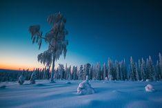 #nature #beautiful #scenery Twilight During Polar Night Finland [OC] (5040x3344)